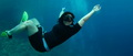 freediving-14.jpg