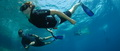 freediving-17.jpg