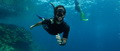 freediving-18.jpg