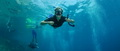 freediving-3.jpg