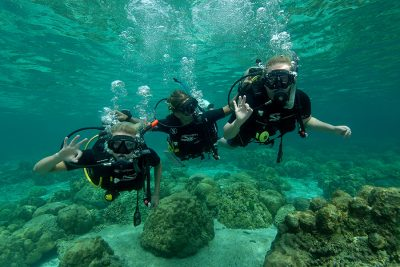 Experience an unforgetable diving day. we will offer 2 dives in one of our wonderfull local sites. Our best value is we are guarantee small group of 2 student per instructor dive ko lanta blue planet