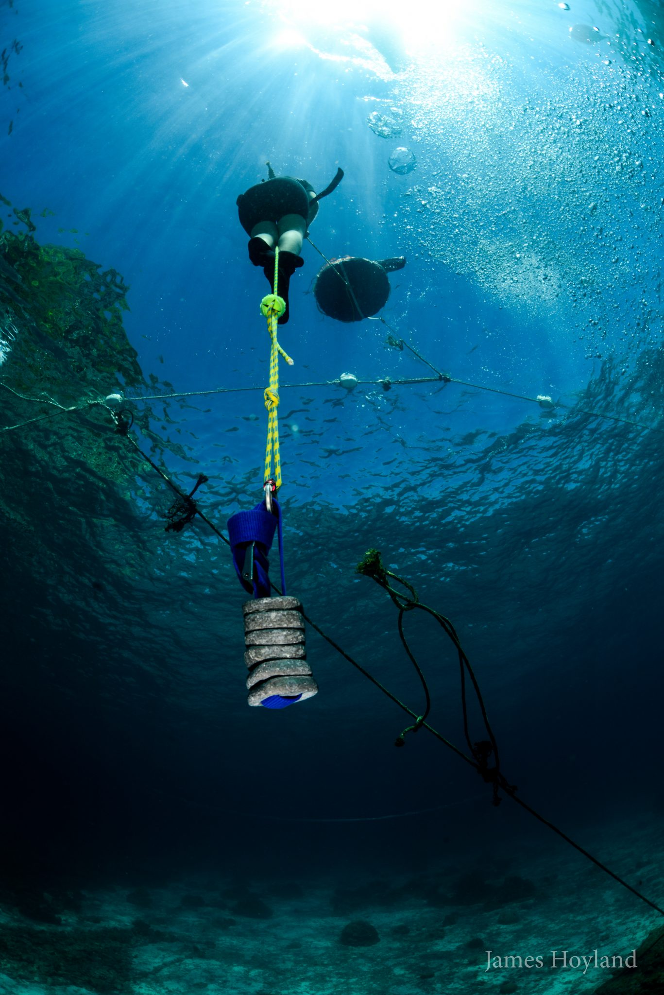 freediving (9)